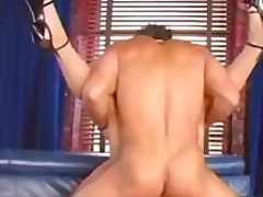 Melissa Lauren, siemensyöksy, kasvoille, tussu, anaali, euro, pornotähti, ruskeaverikkö