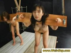bondage, humiliation, group sex, asian, group, torture, bdsm, japanese, from, bound