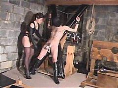 ženska dominacija