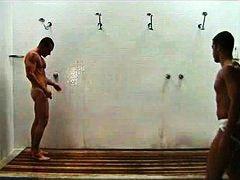 свирки, анално, душ, гей