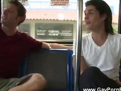 гей, свирки, сред природата, конте, публично, автобус