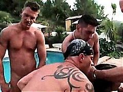 Секс Със Животни