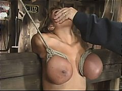 Ава Дивайн, садо-мазо, големи цици, порно звезди