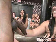 reality show, nazí chlapi, felace, párty, striptýz
