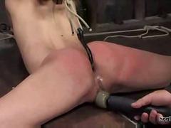Амбър Рейн, секс играчки, садо-мазо