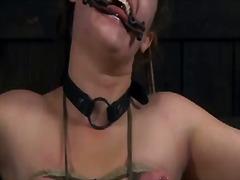 ekstrim, bdsm, hamba, penghinaan, awek, dominasi, perhambaan