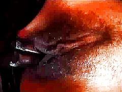 vibrator, latex, cewek, kulit berwarna, dildo